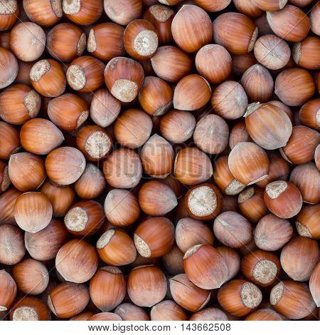Healthy eating vegetarian nut food brown hazelnut
