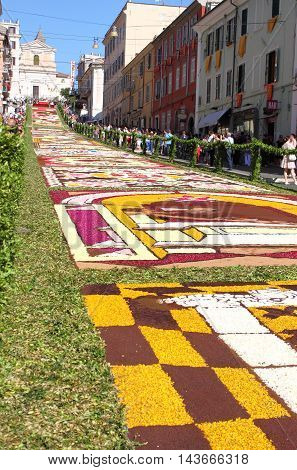 GENZANO ITALY - JUNE 17: Floral Carpet in the Main Street on June 17 2012 in Genzano Italy. This event takes place every year and almost 350.000 flower petals were used this year.