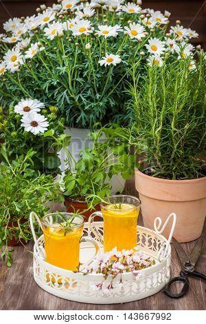 Homemade lemonade with lemon and rosemary served in garden