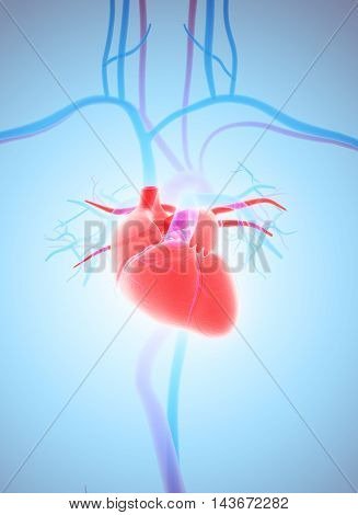 3D Illustration Of Heart, Medical Concept.
