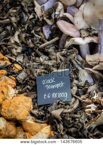 Fresh black trumpet mushrooms on sale in the farmers Borough Market in London, England, Uk