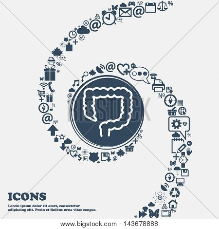 Large Intestine Icon In The Center. Around The Many Beautiful Symbols Twisted In A Spiral. You Can U
