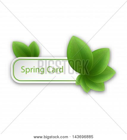 Illustration Eco Friendly Banner with Green Leaves - Vector