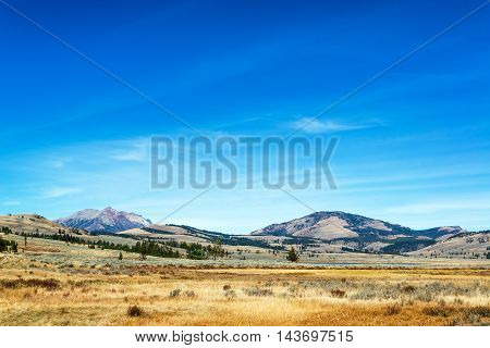 Yellowstone Landscape View