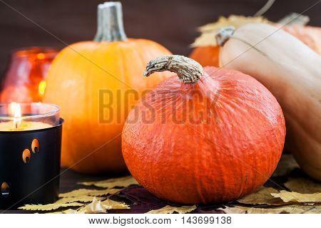 Decorative halloween pumpkins and candles on dark