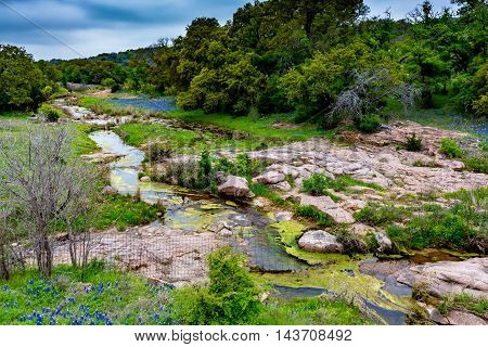 A Rocky Texas River with the Famous Texas Bluebonnet (Lupinus texensis) Wildflowers.