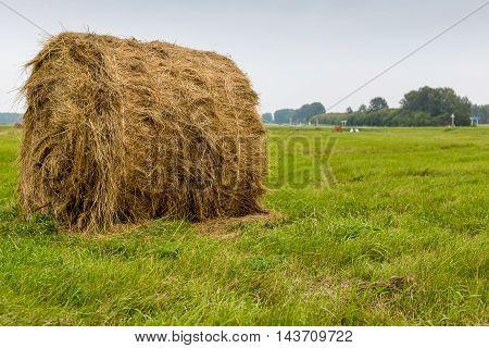 Round bale of straw on green grass