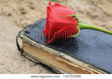 Old Black Book on Beach Sand with a Rose on it.