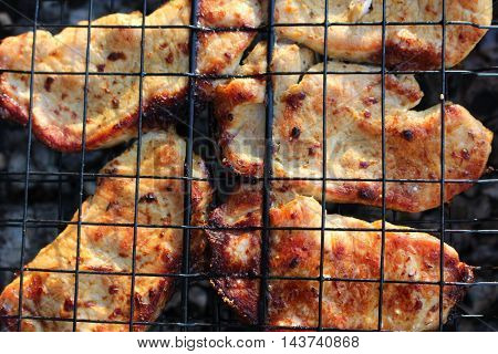 Roasted fresh meat on metal grill