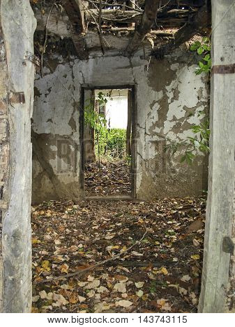 Look through the door of the old ruined farmhouse.