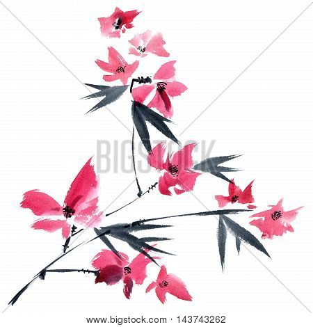 Watercolor and ink illustration of pink flowers on the tree brunch. Oriental traditional painting in style sumi-e gohua.