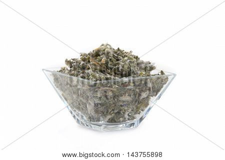 Great Mullein - Verbascum thapsus in glasswares on a white background poster