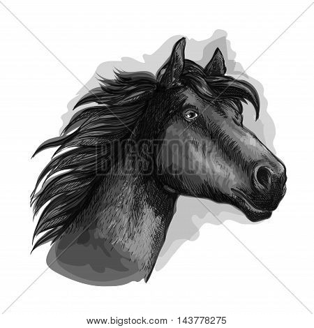 Horse looking ahead. Mustang head and neck portrait. Vector black running free strong stallion