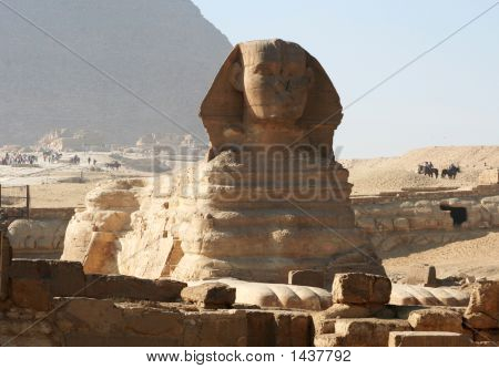Cairo  The Sphinx At Giza