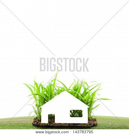 White paper house on Young green grass growing out of the ground