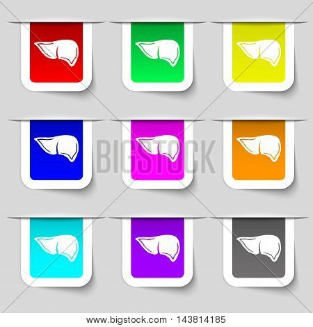 Liver Icon Sign. Set Of Multicolored Modern Labels For Your Design. Vector