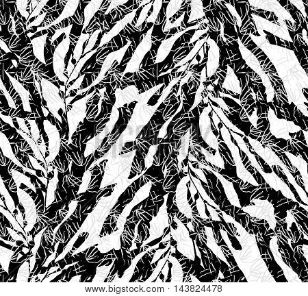 Kelp Seaweed Black On White With Texture
