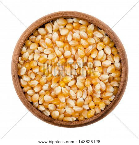 Unpopped popcorn in a wooden bowl on white background. A type of corn that expands from the kernel and puffs up when heated. Yellow seeds, edible, raw and vegan food. Isolated macro photo close up.