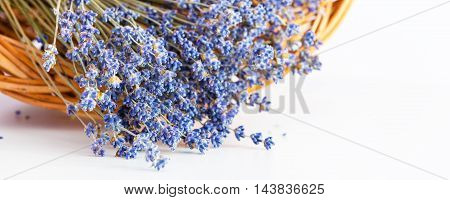 Bunch of dry wild mountain lavender flowers in basket on white background