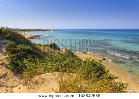 Summer beach.Torre Guaceto Nature Reserve: panoramic view of the coast from the dunes. Mediterranean maquis: a nature sanctuary between the land and the sea.