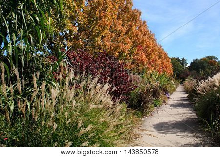 A Walking Path Through The Garden In Early Autumn Ault Park Cincinnati Ohio