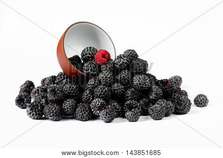 Not like everything. Fresh black raspberries Cumberland isolated on white