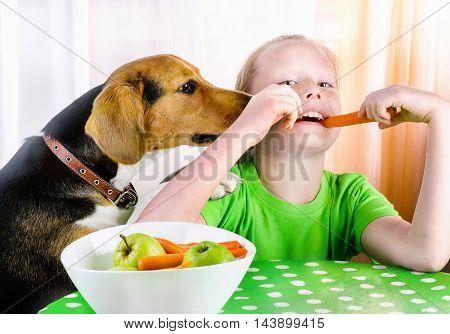 Smiling Girl And Cute Beagle Dog.