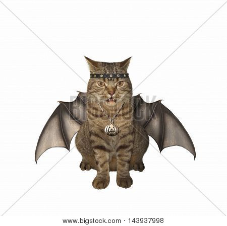 A vampire cat has wings on the white background.. It looks like a bat.
