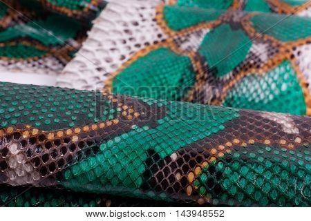 Python snakeskin leather background, snake skin, texture, animal, reptile