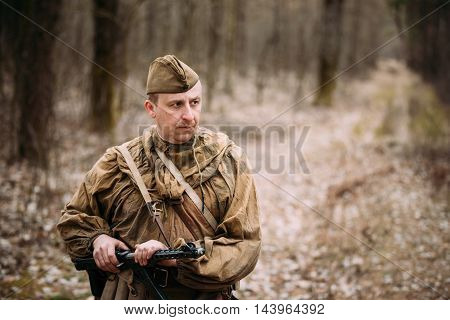 Pribor, Belarus - April, 04, 2015: Unidentified re-enactor dressed as Russian Soviet soldier in camouflage walk through forest