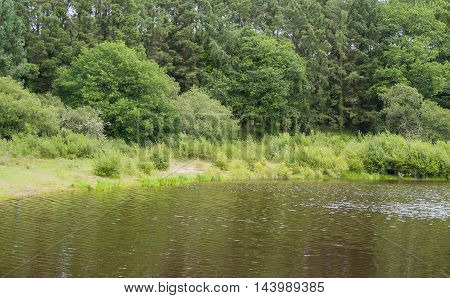 riparian scenery at a lake around the Carnac a commune in the Morbihan department of Brittany France