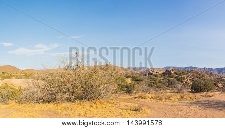 Expanse Of Mojave Desert Wilderness