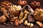 Different types of nuts. Walnut, hazelnut, cashew, peanuts, brazil nuts, pine nuts and others poster