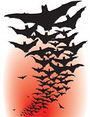 Illustrated design of flying bat silhouettes poster