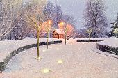Winter nature with frosted winter trees. Winter landscape with snowflakes. Winter with falling snow. Winter night landscape - house among the illuminated winter frosty trees. Winter night in the city. poster