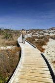 Man walking on wooden walkway by the beach at Tauparikaka Marine Reserve Haast New Zealand poster