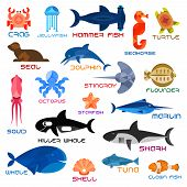 Oceanarium animals and fishes. Ocean and sea vector icons of crab, jellyfish, hammerhead fish, seahorse, turtle, seal, dolphin, squid, octopus, stingray, flounder, starfish, marlin killer whale shark whale shell tuna clown fish poster