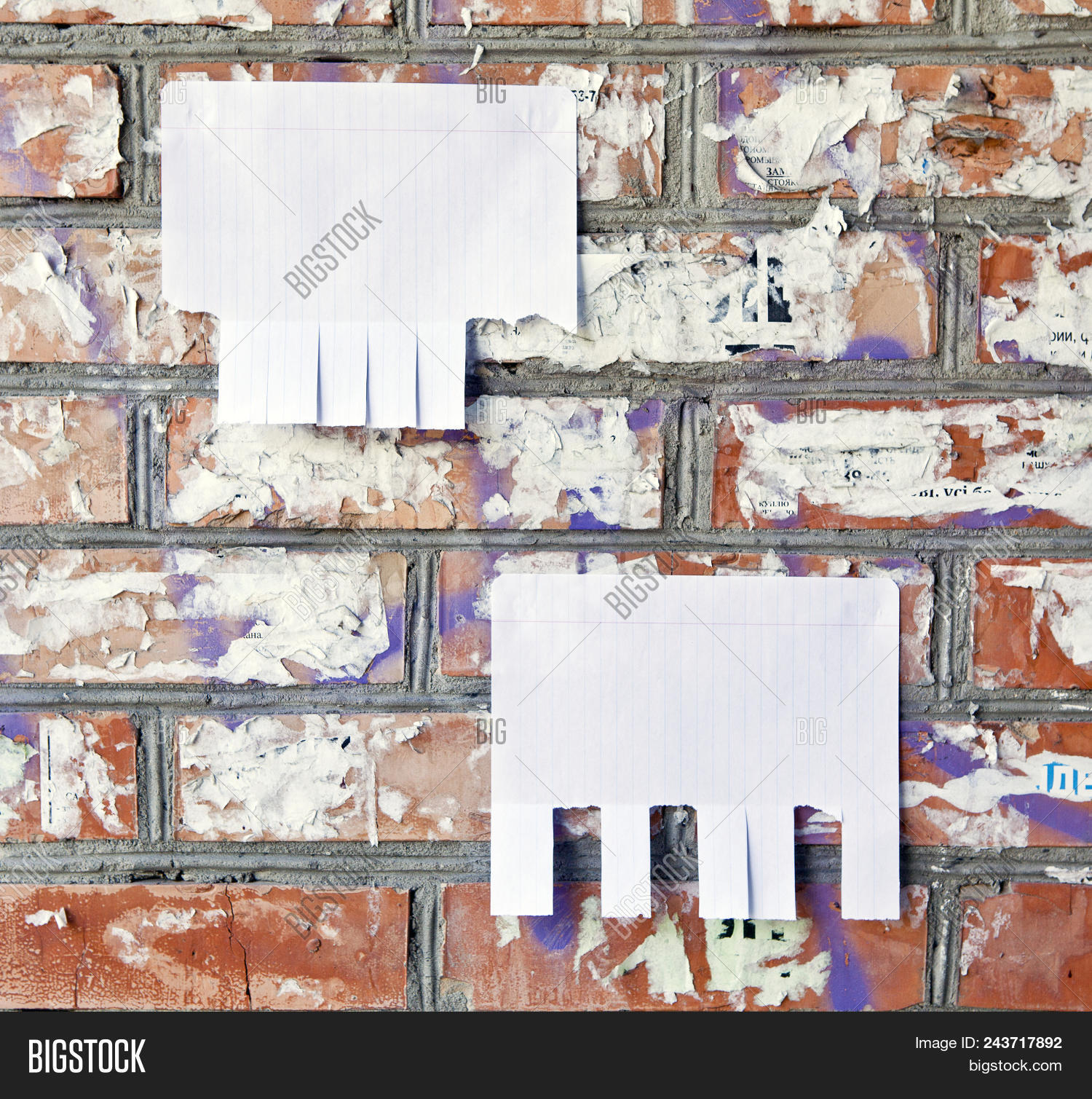 Blank White Paper Tear Off Tabs Image & Photo | Bigstock