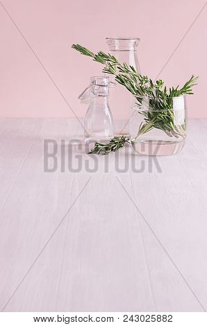 Modern Soft Light Pink Pastel Home Interior With Green Plant On White Wood Background.