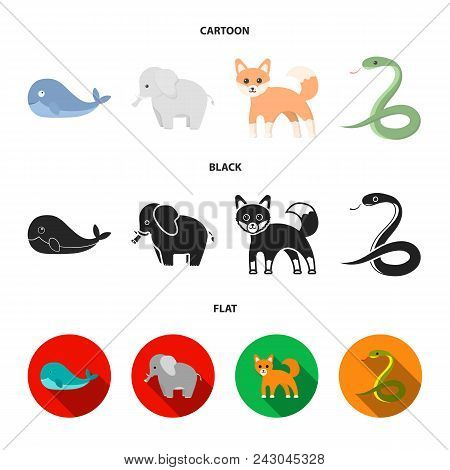 Whale, Elephant, Snake, Fox.animal Set Collection Icons In Cartoon, Black, Flat Style Vector Symbol