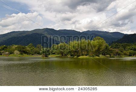 lake garden view