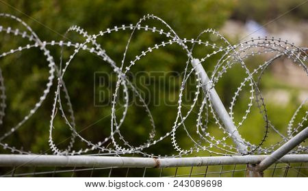Wire barbed mesh metal fence, sharp with razors, circle. Warning of danger and protecting of area. Blurred nature background, close up view.