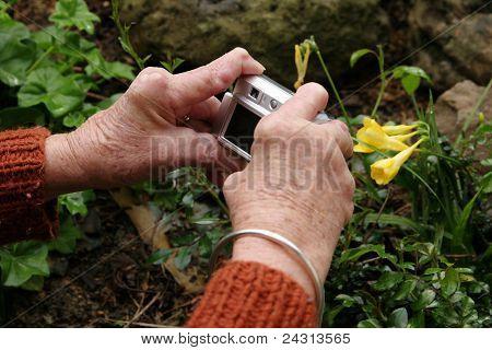 Arthritic hands taking photo