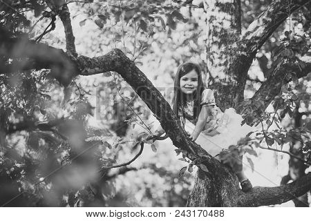 Child Childhood Children Happiness Concept. Child Smile On Tree Branch, Childhood. Small Girl Climb