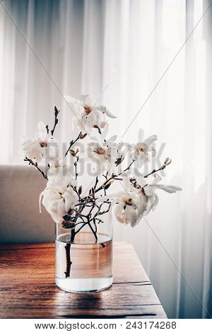 White Magnolia Twigs Freshly Cut From Magnolia Tree. Glass Vase Standing On Wooden Table With White