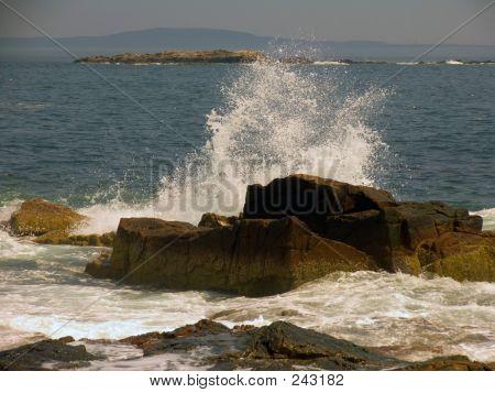 Oceanspray
