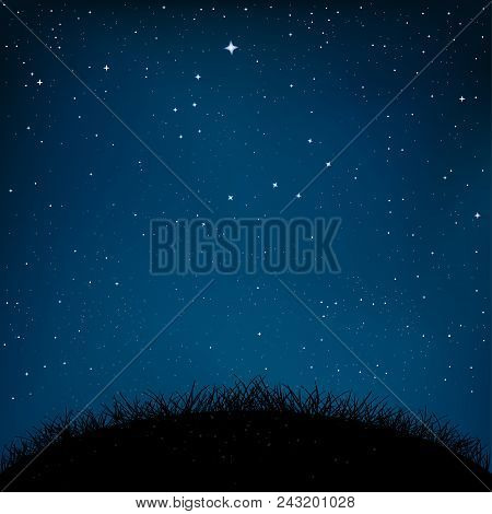 Night Starry Sky And Dark Grass Ground Silhouette Background. Nature Nightly Meadow Landscape With S