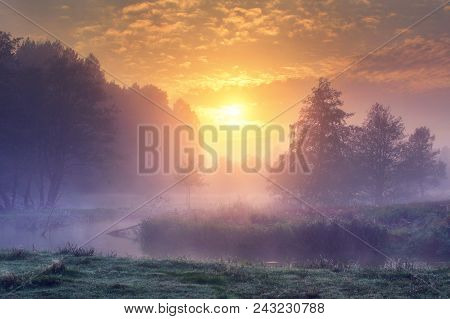 Landscape Of Amazing Summer Nature In Early Foggy Morning On Sunrise. Trees On River Bank In Mist On