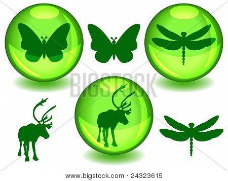 Bio Or Eco Spheres