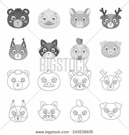 Protein, Raccoon, Chicken, Pig. Animal Muzzle Set Collection Icons In Outline, Monochrome Style Vect